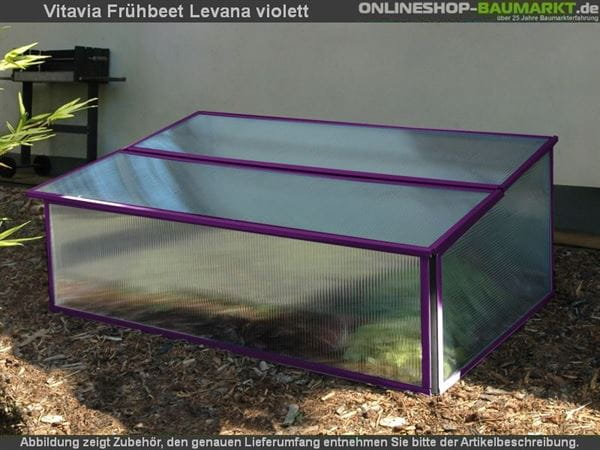 Vitavia Frühbeet Levana, violett